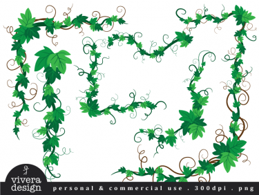 Ivy clipart #8, Download drawings