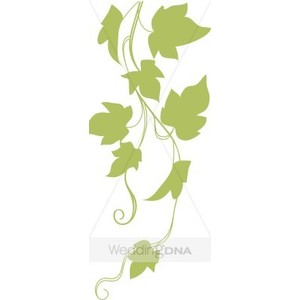 Poison Ivy clipart #3, Download drawings