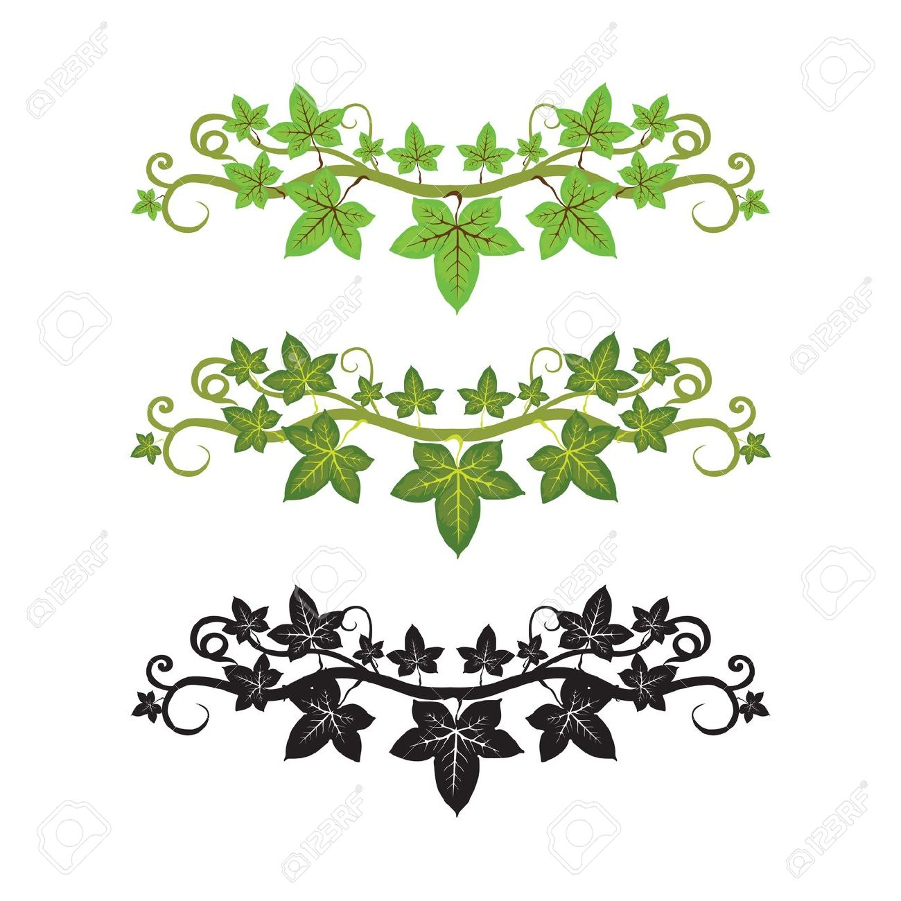 Ivy clipart #19, Download drawings