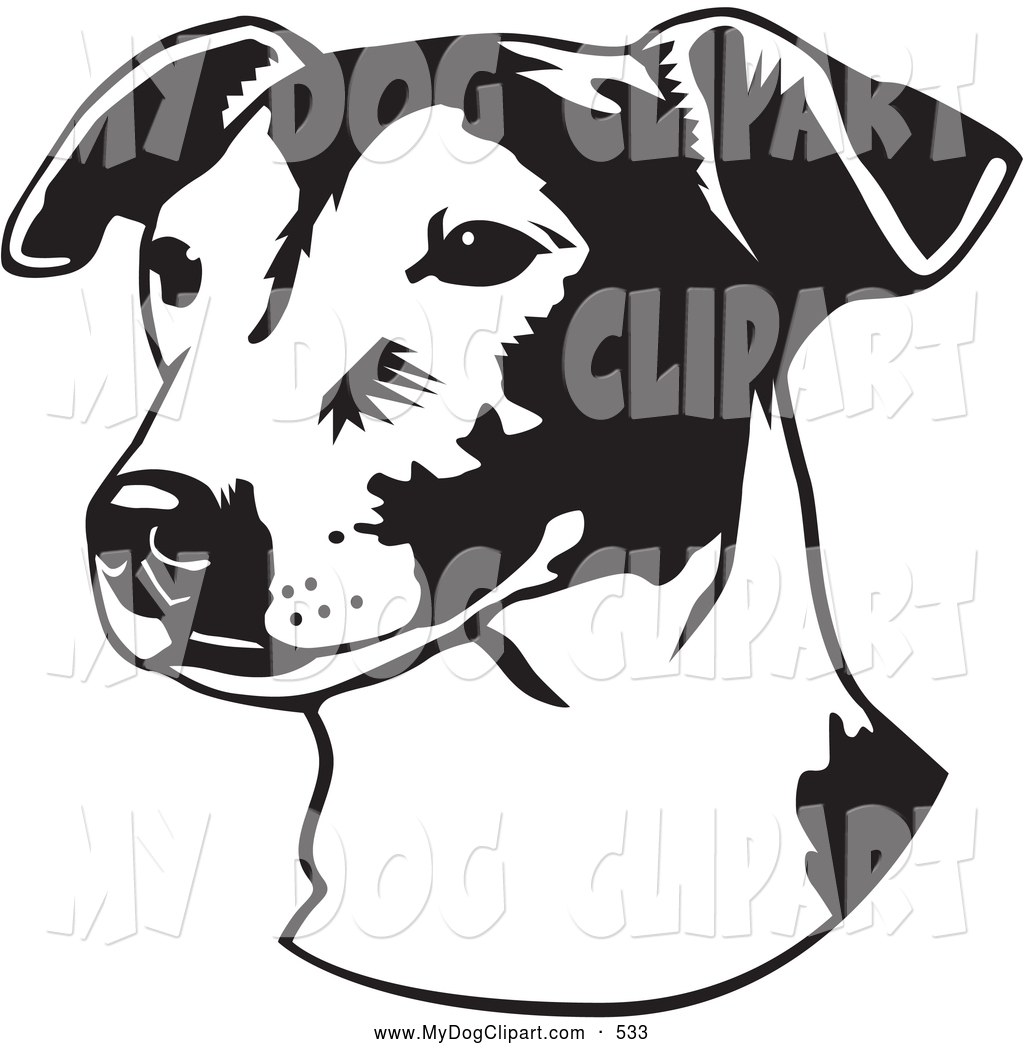 Jack Russell Terrier clipart #11, Download drawings