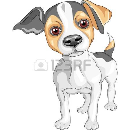 Jack Russell Terrier clipart #3, Download drawings