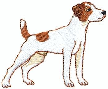 Jack Russell Terrier clipart #17, Download drawings