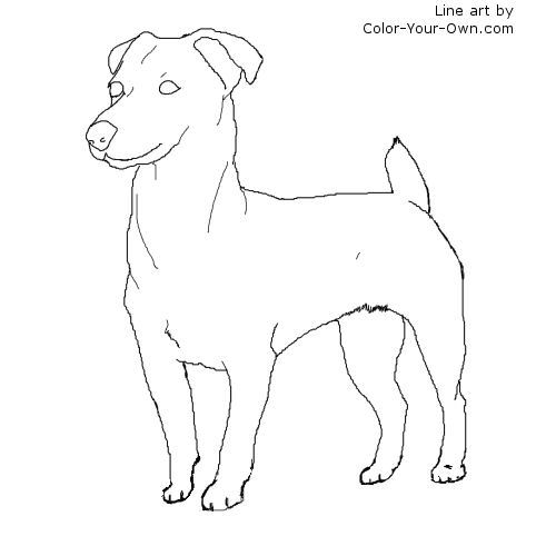 jack russell coloring pages - photo#8