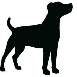 Jack Russell Terrier svg #17, Download drawings