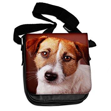 Jack Russell Terrier svg #13, Download drawings