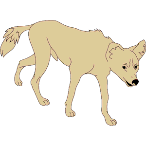 Jackal clipart #13, Download drawings
