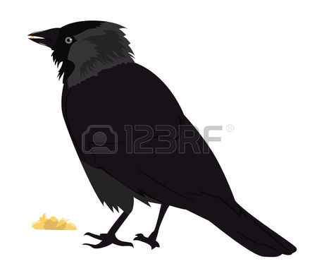 Jackdaw clipart #15, Download drawings