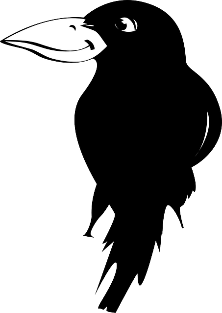 Jackdaw clipart #13, Download drawings