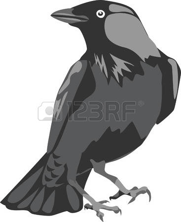 Western Jackdaw clipart #19, Download drawings