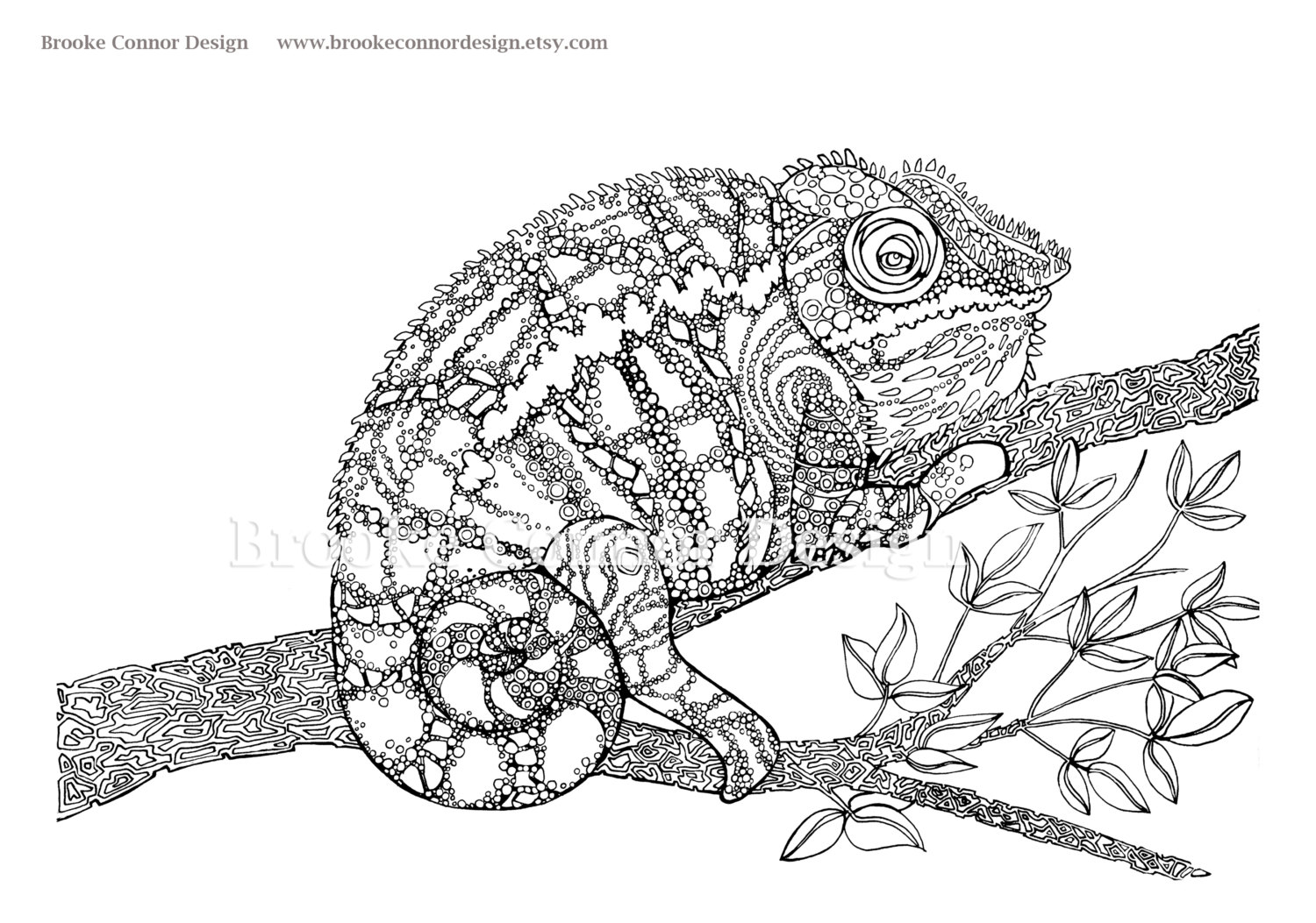 Very Detailed Coloring Pages On Images Free Download For: Jackson's Chameleon Coloring, Download Jackson's Chameleon
