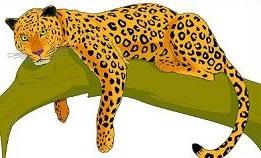 Jaguar clipart #14, Download drawings