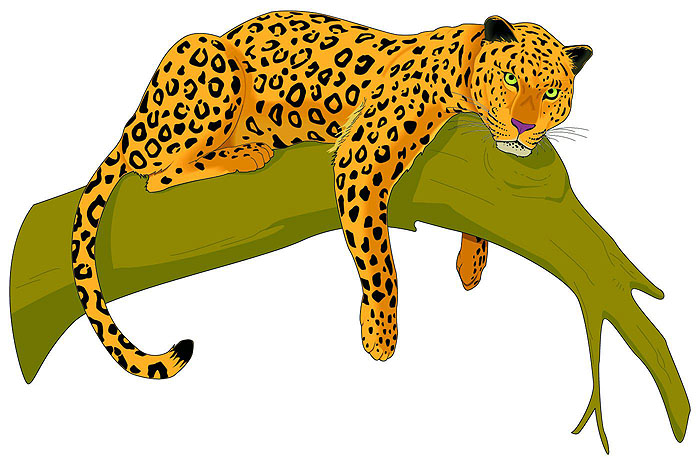 Leopard clipart #16, Download drawings