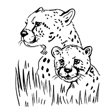 coloring pages jaguars - photo#20