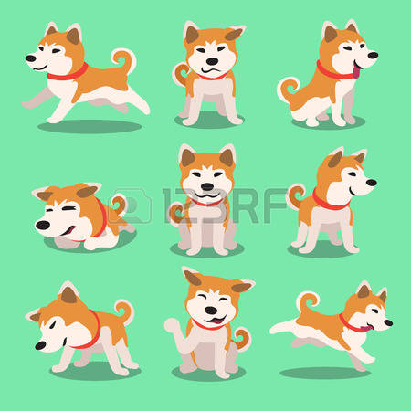 Japanese Akita clipart #11, Download drawings