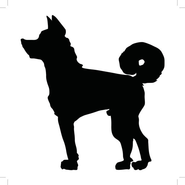 Japanese Akita clipart #5, Download drawings