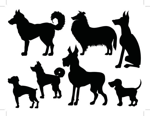 Japanese Akita clipart #17, Download drawings