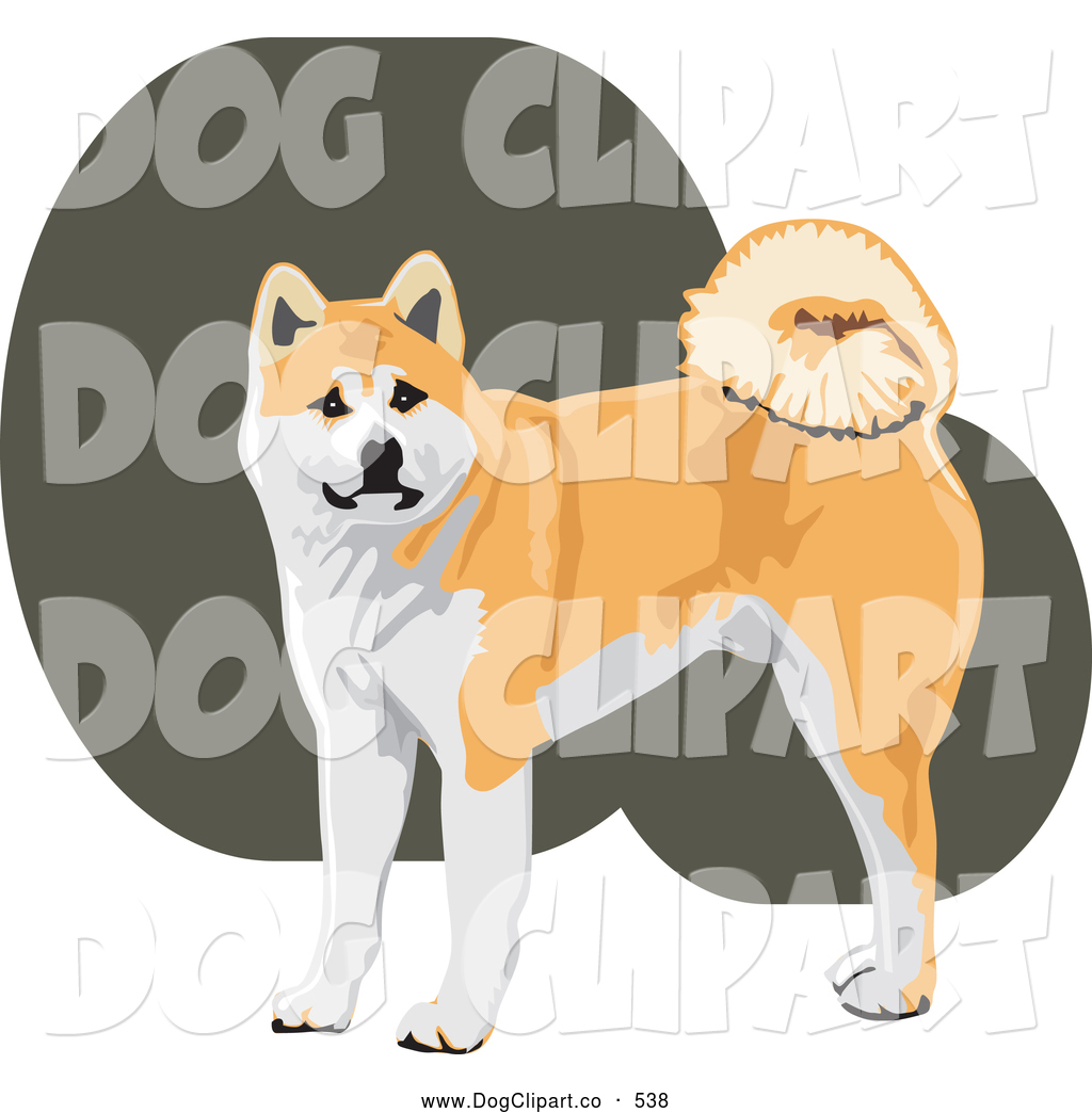 Japanese Akita clipart #7, Download drawings