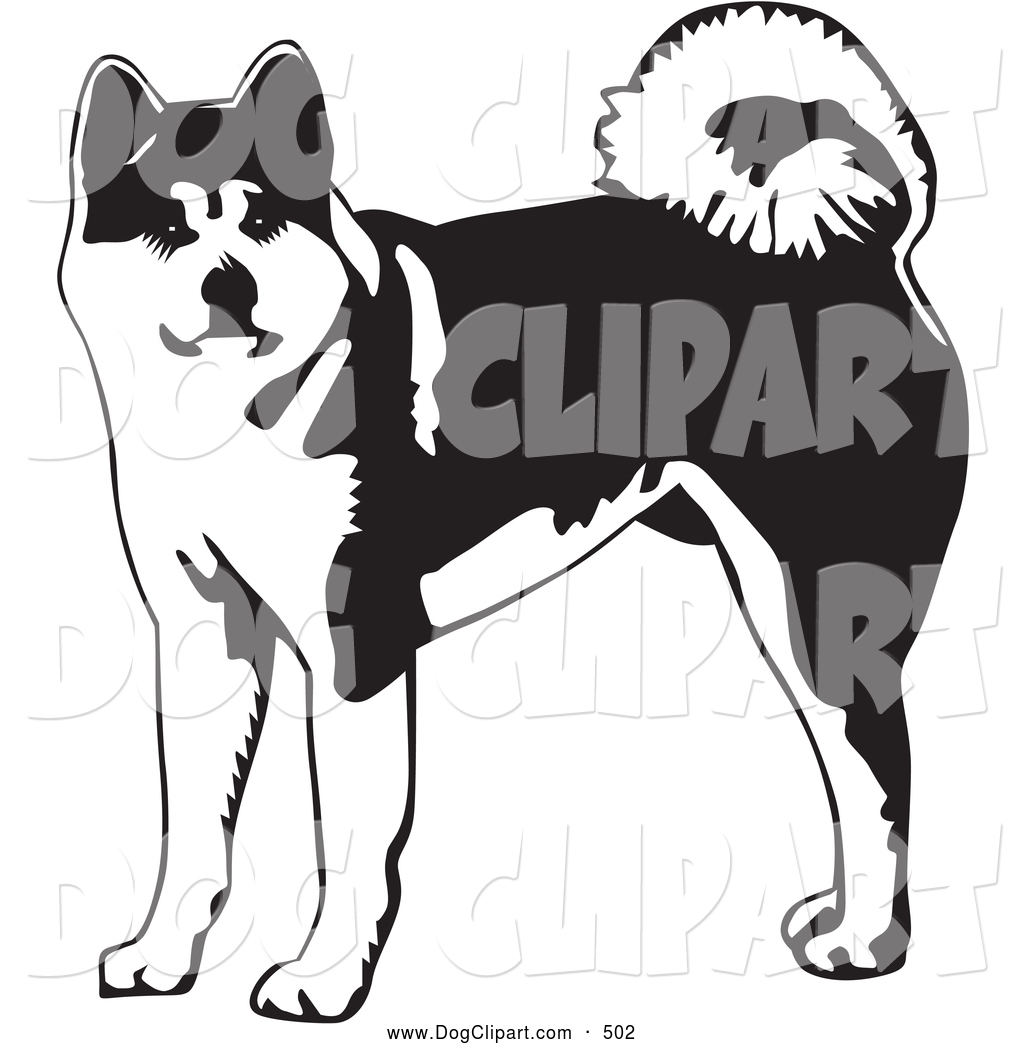 Japanese Akita clipart #20, Download drawings