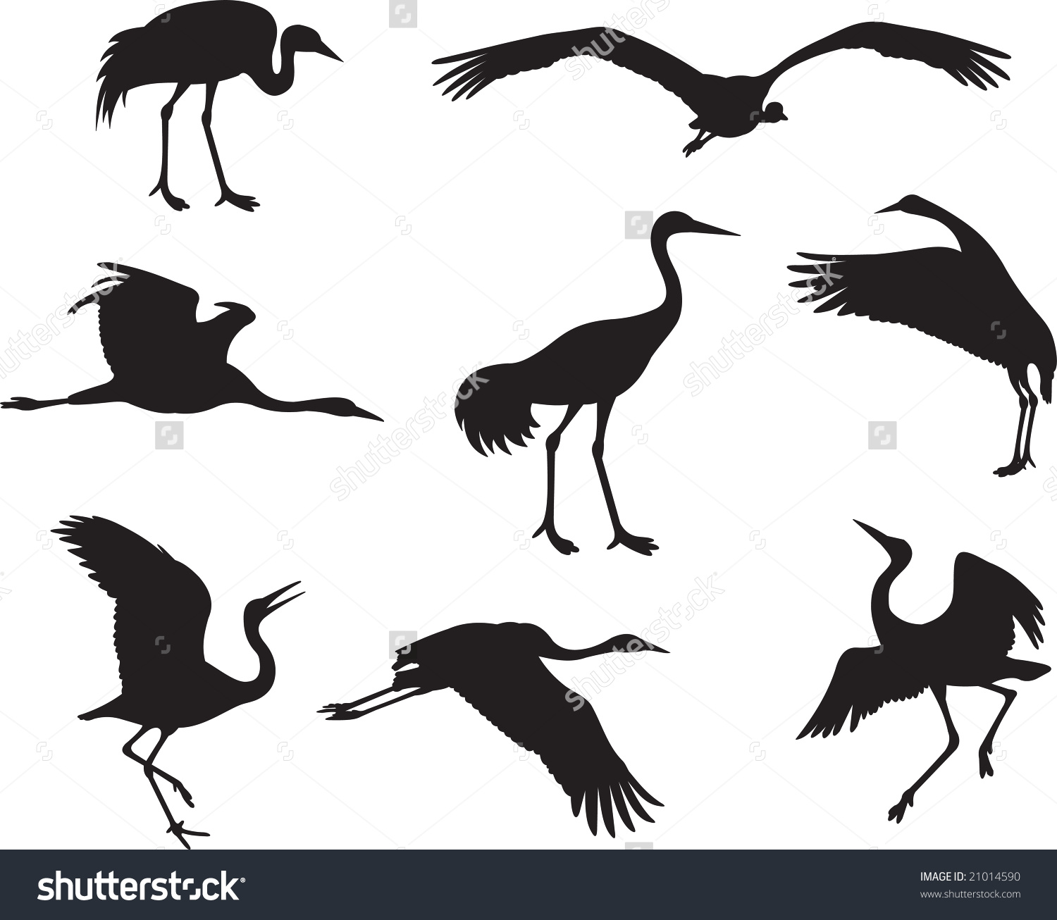 Japanese Crane clipart #3, Download drawings