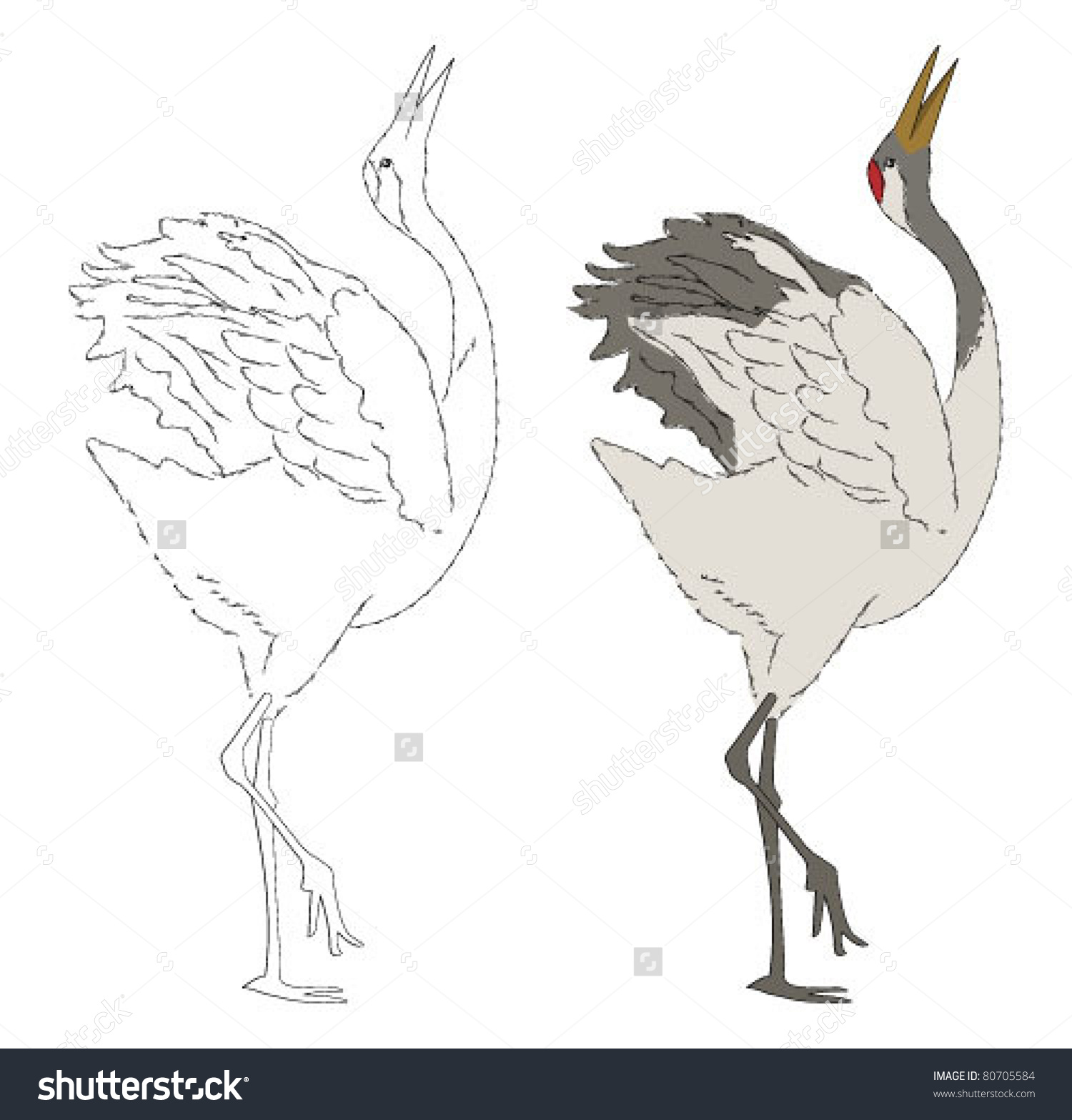 Japanese Crane clipart #5, Download drawings