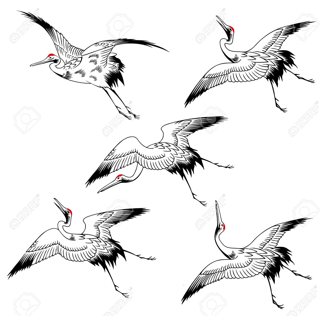 Japanese Crane clipart #10, Download drawings
