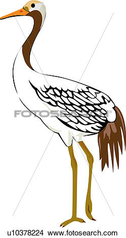 Japanese Crane clipart #7, Download drawings