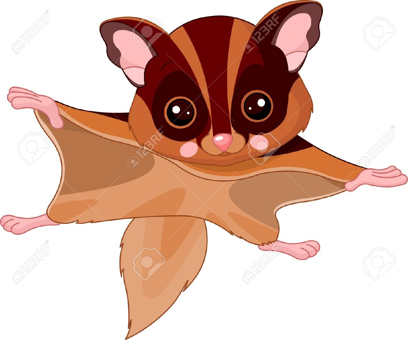 Japanese Dwarf Flying Squirrel clipart #4, Download drawings