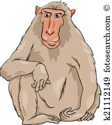 Japanese Macaque clipart #20, Download drawings