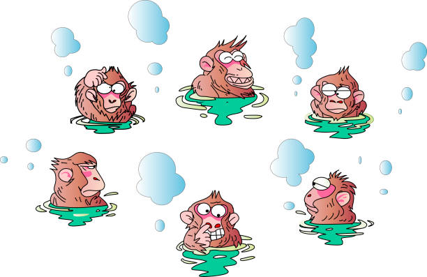 Japanese Macaque clipart #15, Download drawings