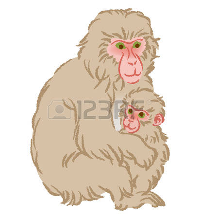 Macaque clipart #16, Download drawings