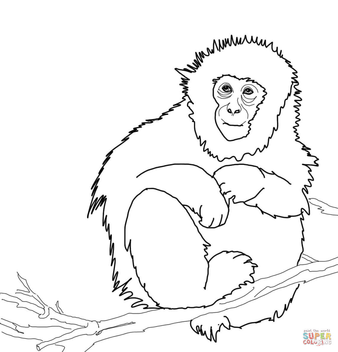 Howler Monkey coloring #11, Download drawings