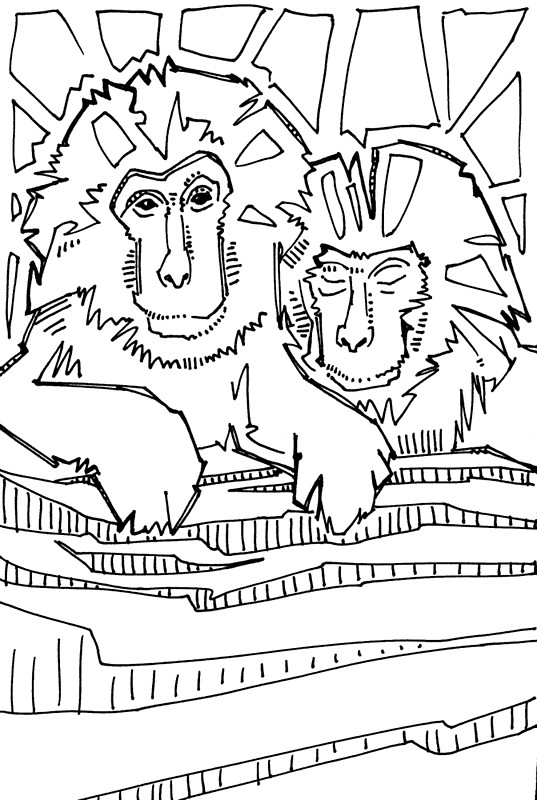 Japanese Macaque coloring #19, Download drawings