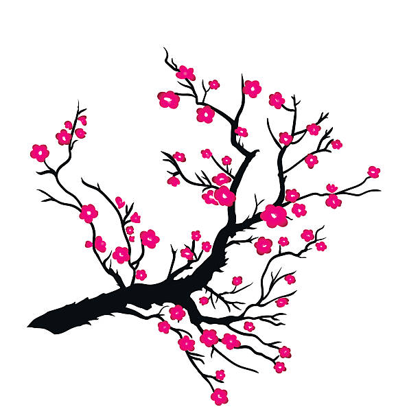 Japanese Quince clipart #11, Download drawings