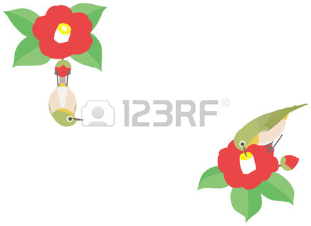 Japanese White-eye clipart #2, Download drawings