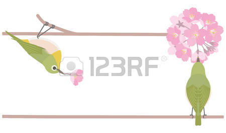Japanese White-eye clipart #1, Download drawings