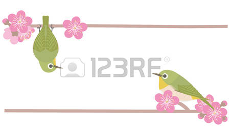Japanese White-eye clipart #4, Download drawings