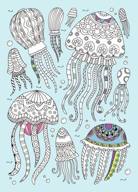 Jellies coloring #1, Download drawings