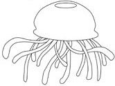 Jellyfish coloring #15, Download drawings