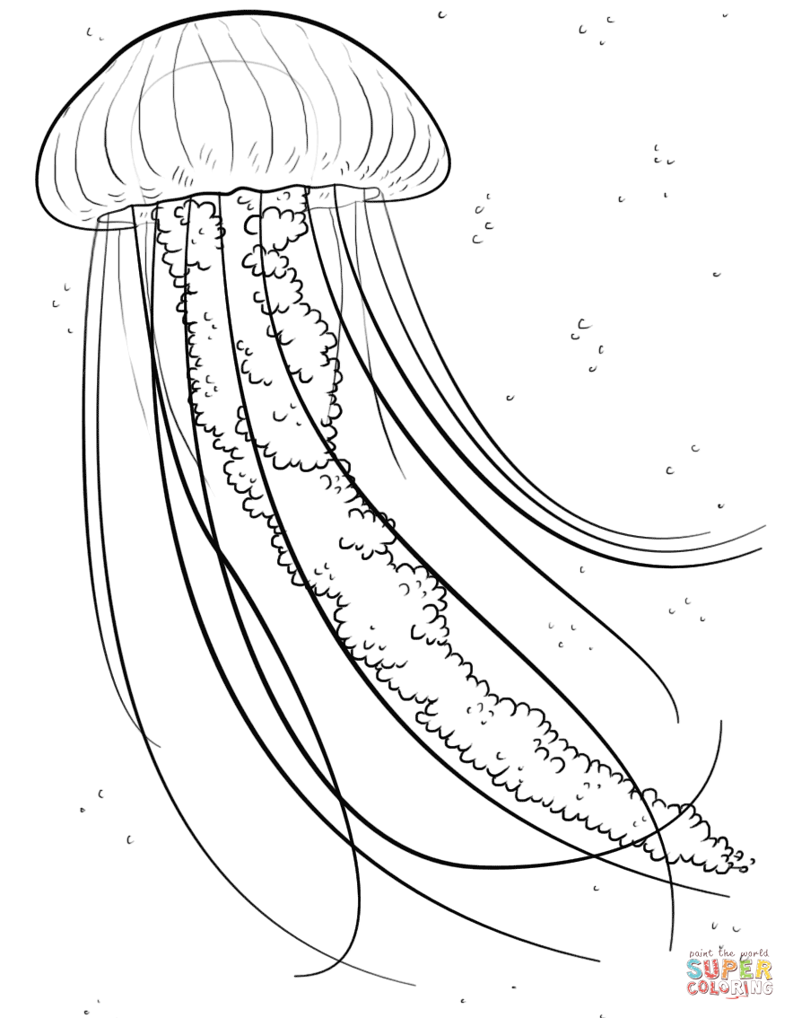 Jellyfish coloring #8, Download drawings