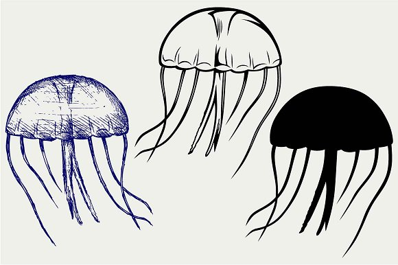 Jellyfish svg #10, Download drawings