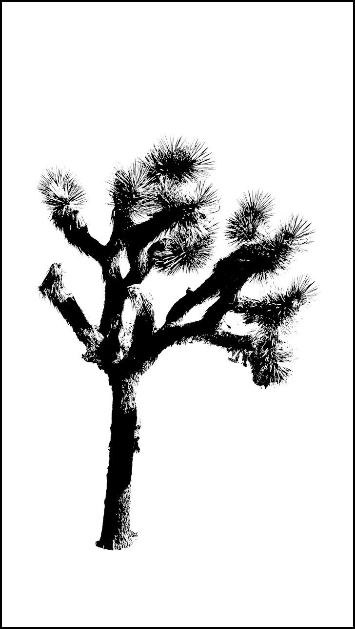 Joshua Tree clipart #13, Download drawings