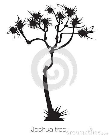 Joshua Tree clipart #13, Download drawings