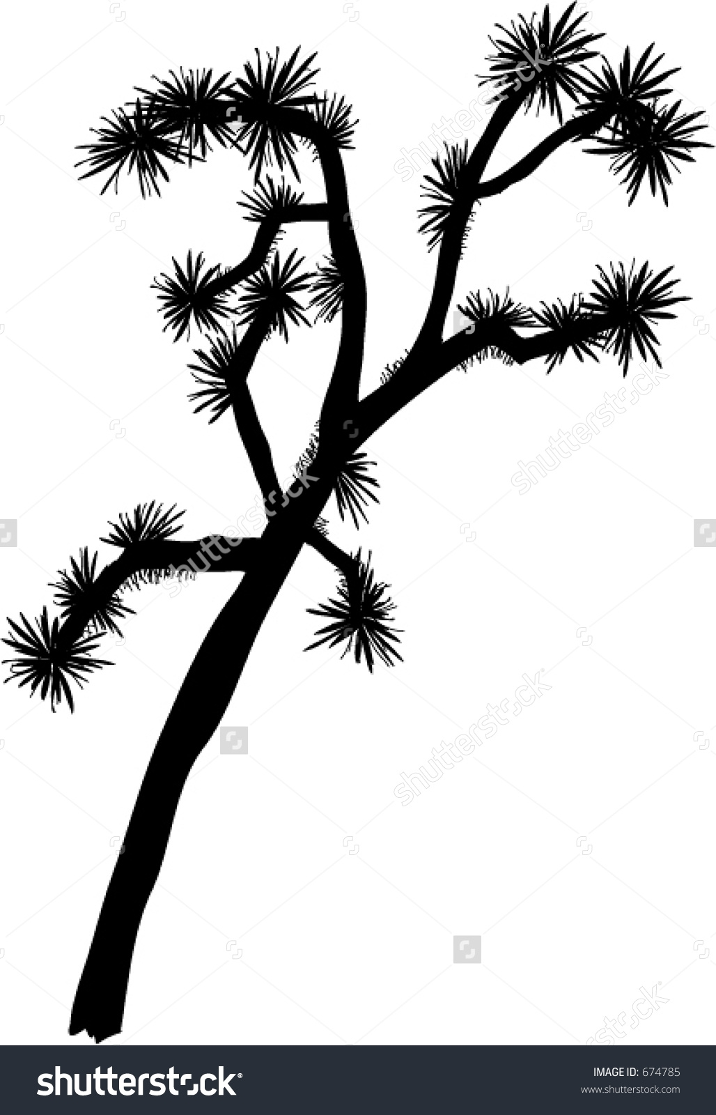 Joshua Tree clipart #4, Download drawings