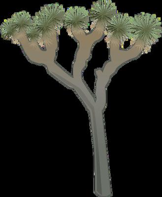 Joshua Tree clipart #2, Download drawings