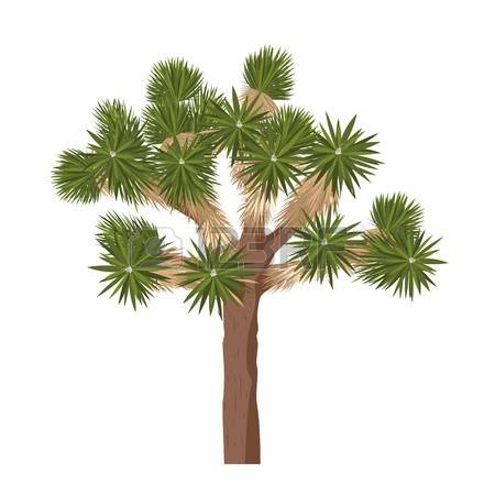 Joshua Tree clipart #6, Download drawings