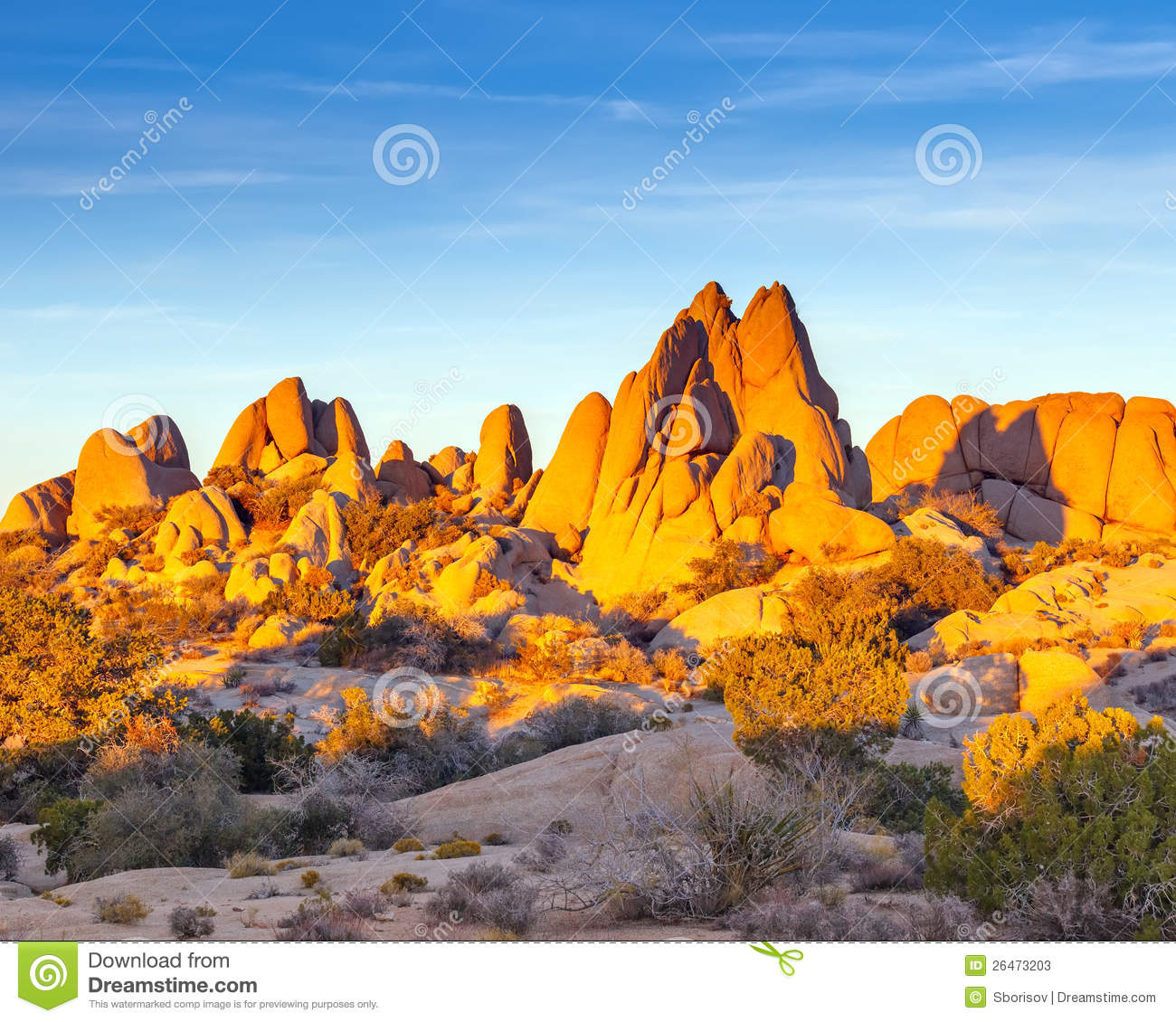 Joshua Tree National Park clipart #3, Download drawings