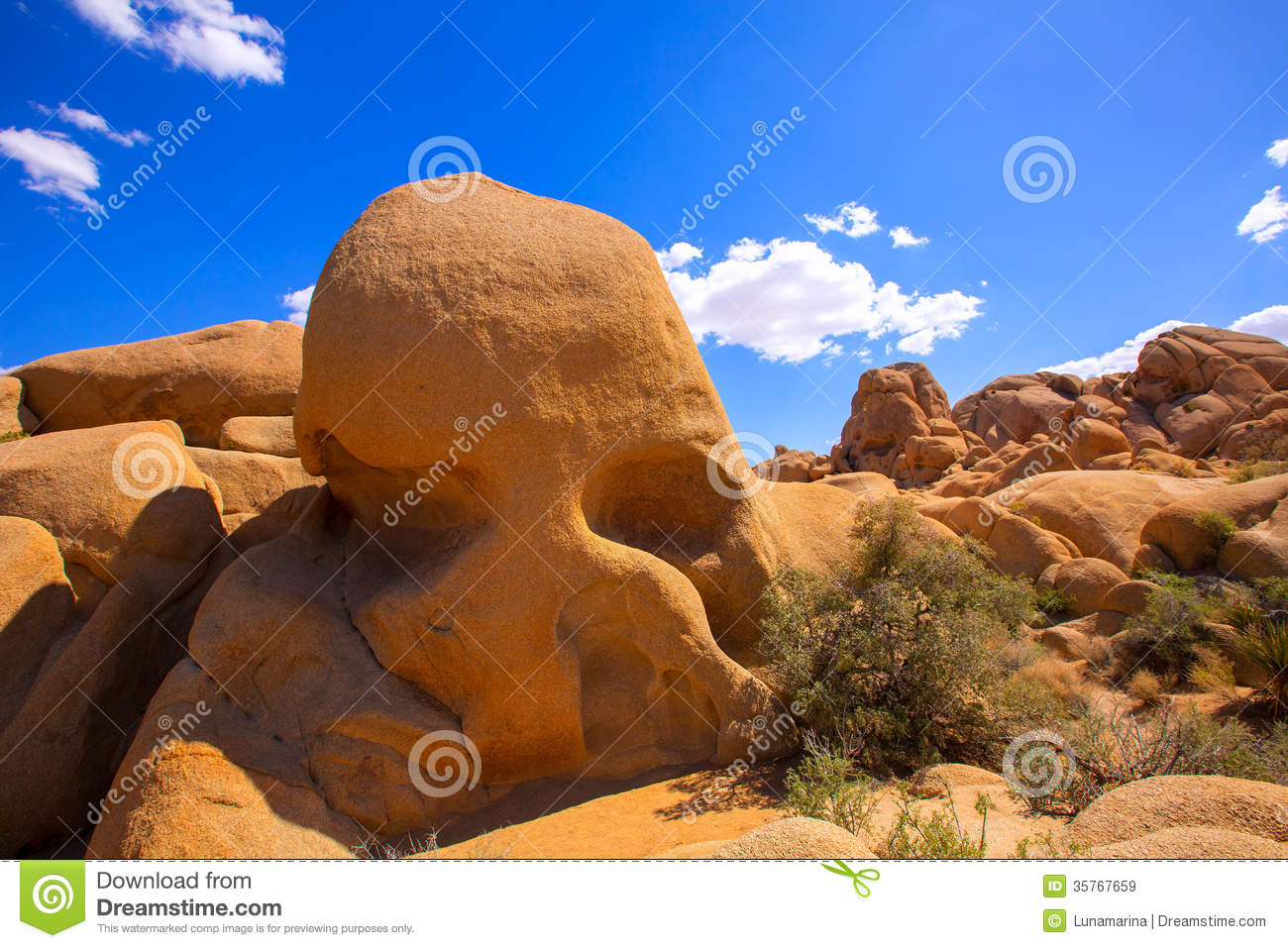 Joshua Tree National Park clipart #5, Download drawings