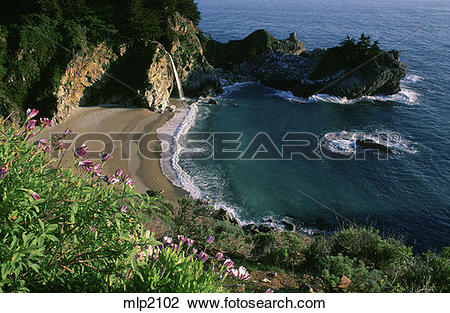 Julia Pfeiffer Burns State Park clipart #10, Download drawings