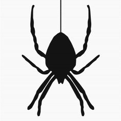 Jumping Spider clipart #3, Download drawings