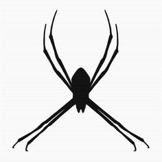 Jumping Spider clipart #2, Download drawings